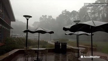 Gusty storm blows through campus