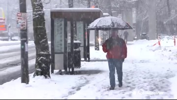 Record-breaking snow brings Seattle area to standstill