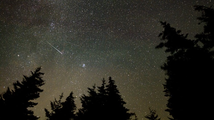 'Best meteor shower of the year': When to see the Perseids peak