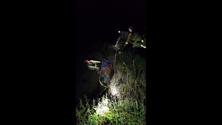Woman survives for a week after crashing vehicle off 200-foot cliff