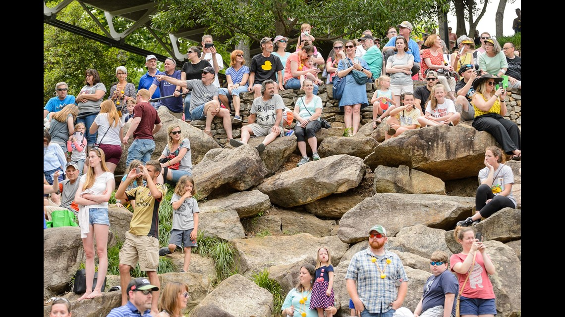 43 places to visit in South Carolina this summer | 9news com