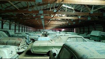 Bachelor farmer's massive car collection unveiled