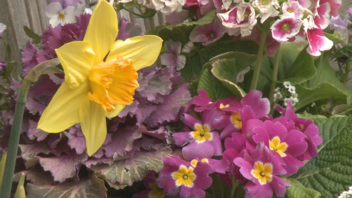 Proctor's Garden: Raise crops to help reduce stress