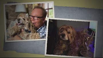'He profoundly changed my life:' Kirk Montgomery says goodbye to beloved dog Joey