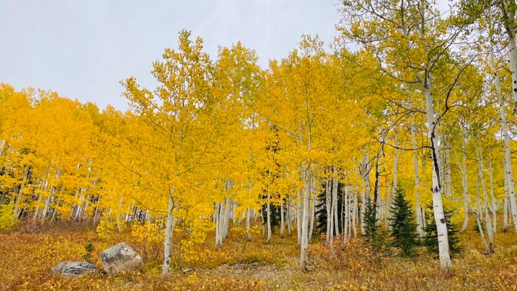 9Things to do in Colorado this weekend: October 9-11