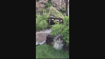 Flooding a concern along Turkey Creek near Red Cliff