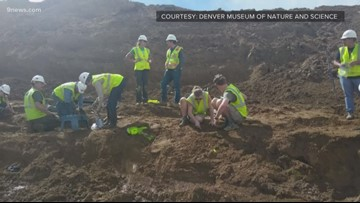 Dinosaur bones found in Highlands Ranch likely 66 to 68 million years old