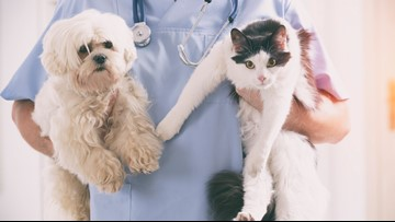 Those in need can get free wellness exams, rabies vaccines for their pets