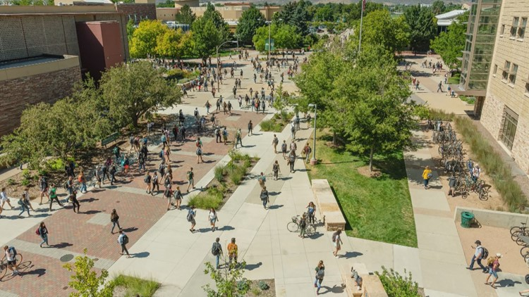 Business Brief: Findings from CSU's system-wide economic impact study