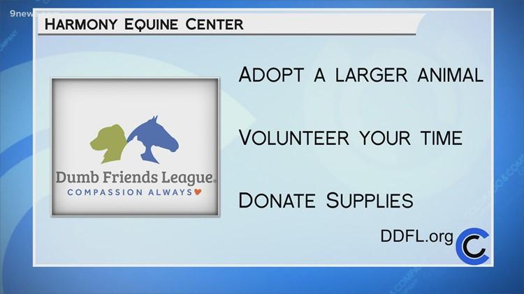 Dumb Friends League - Harmony Equine Center - March 3, 2021