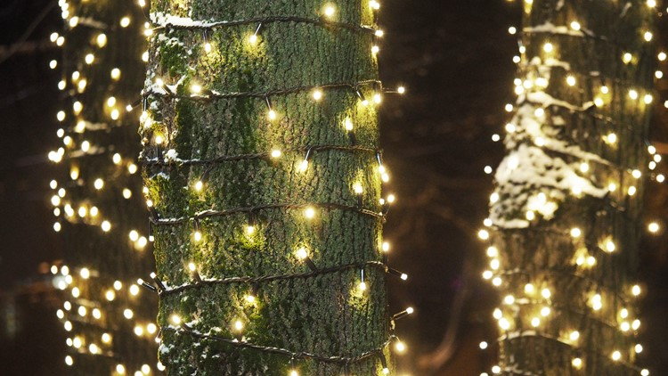 Tree trunks decorations wrapped with New Year garlands. Street Christmas decorations. Christmas light tree