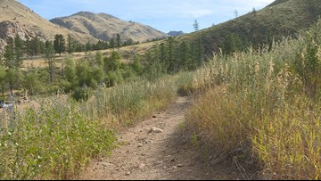 Volunteers have spent thousands of hours rebuilding this trail, which was destroyed by a fire and then a flood