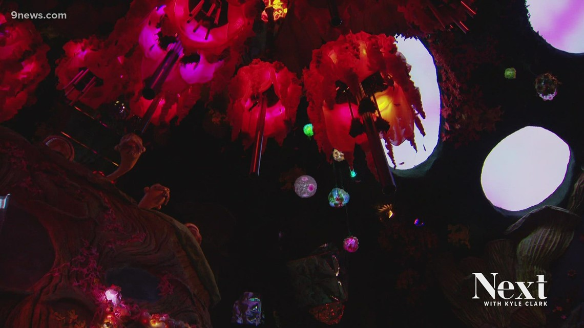 Friday Good News from Meow Wolf