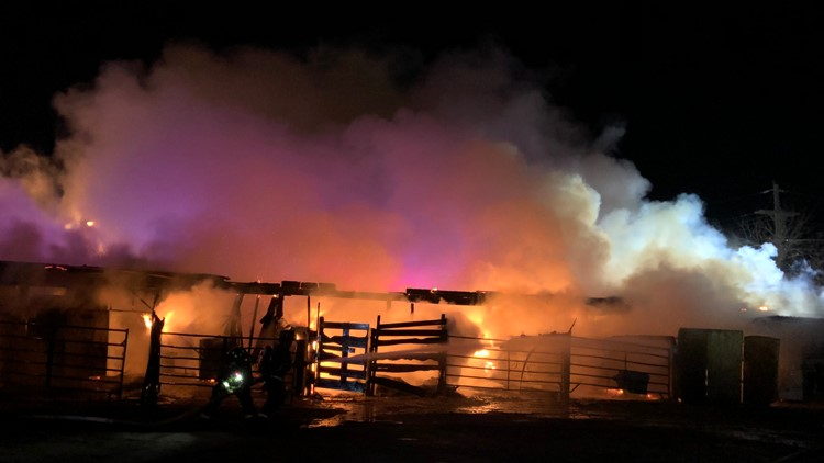 Aurora Fire Rescue saved six horses from a barn fire