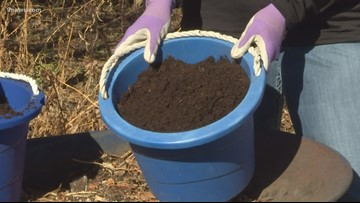 Use manure to improve the health and productivity of your garden
