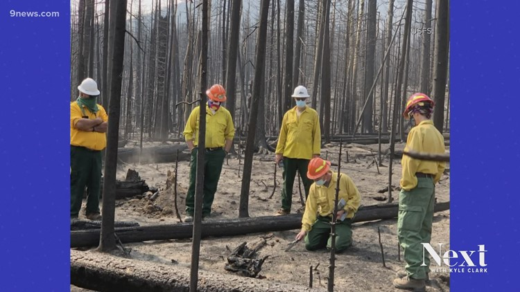 Cleaning up after the 2020 fire season will take years, not months