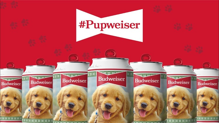 Your pup could be the face of Budweiser's holiday cans