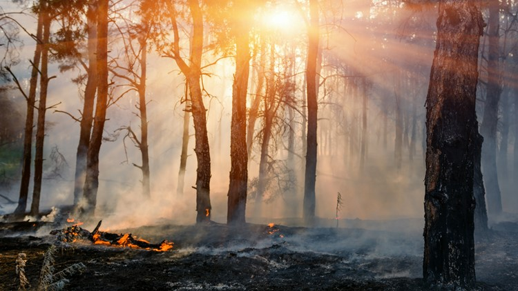 New report shows Colorado communities at risk for deadly wildfires