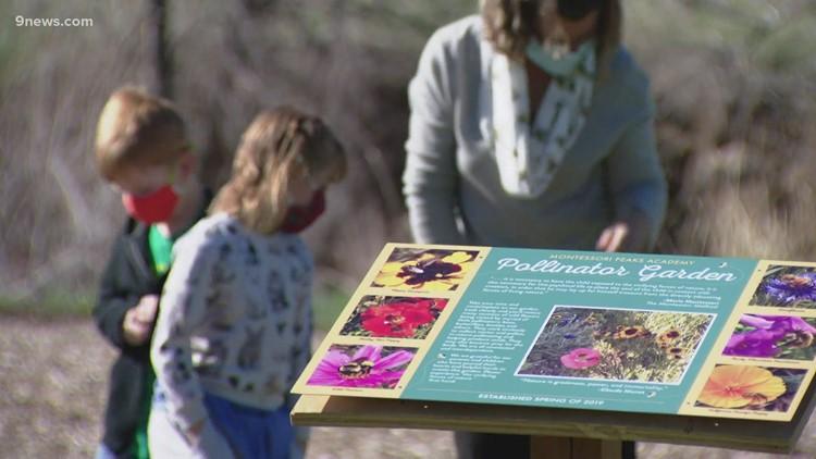 Littleton school creates pollinator garden