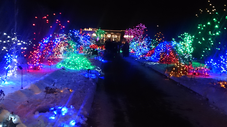 The Blossoms of Light runs from 5:30 to 9:00 p.m. daily until January 1st at the Denver Botanic Gardens.