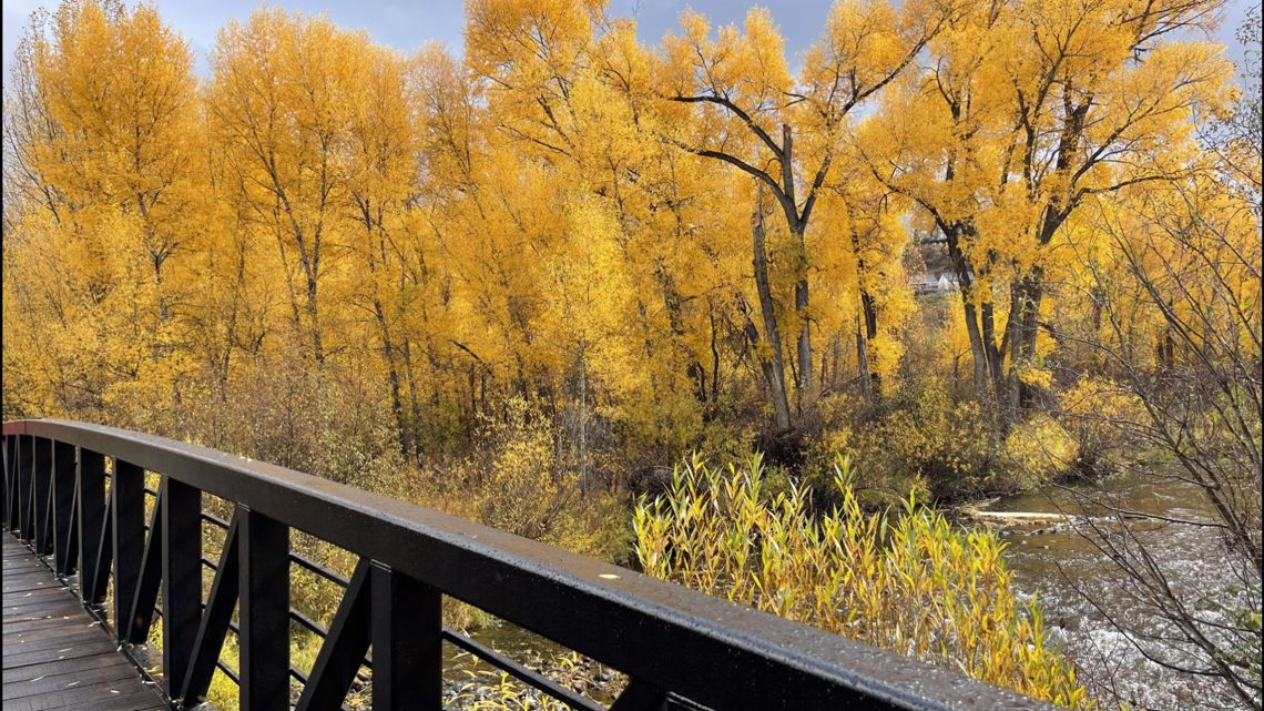 9 great walks to see fall colors in Denver