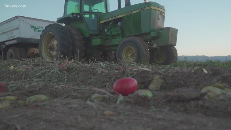 Despite a drought, California farmers have to continue to pull water
