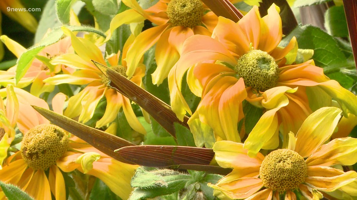 Proctor's Garden: Decorate for fall