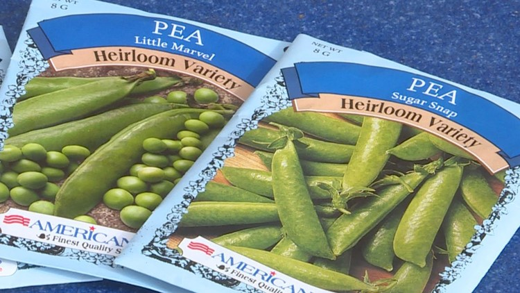 Pick the right pea 2