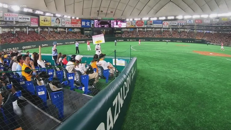 Japanese baseball fans are passionate, and some even sit on the field during games