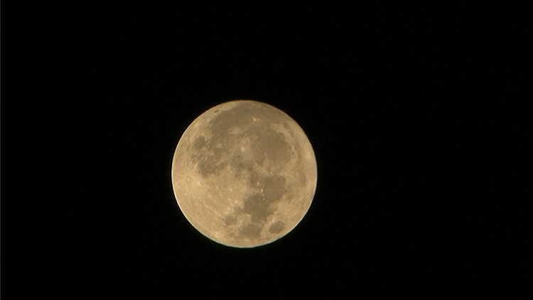 Nation Now You Can Still See The Pink Moon Tonight