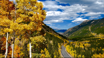 Expect a great year for Colorado's fall colors