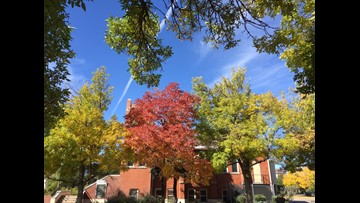9 awesome walks to see fall colors in and around Denver
