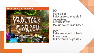 The do's and don'ts of fall gardening