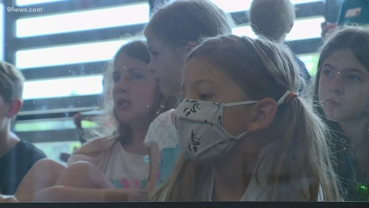 Denver Zoo hospital inspires next generation of animal lovers