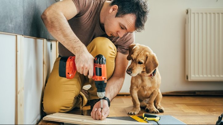 home repairs construction Remodeling with a Dog