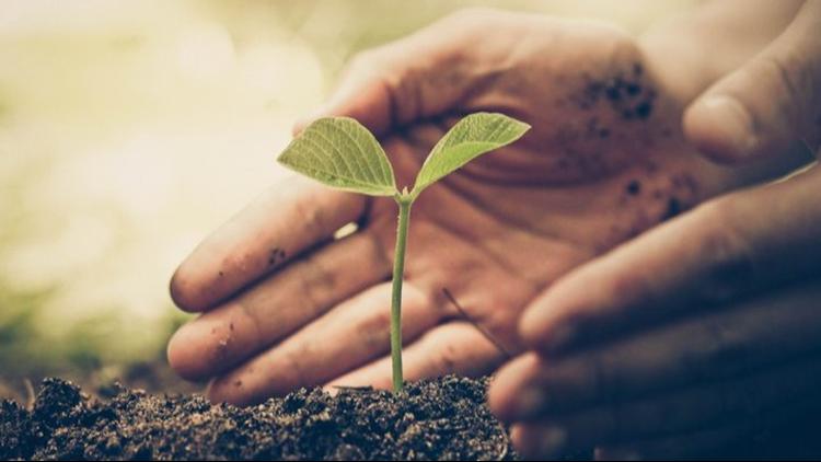 List of Earth Day celebrations in Denver | 9news com