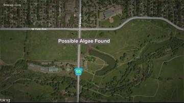 Blue-green algae found in pond at Bear Creek Greenbelt