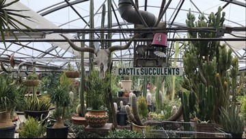 Paulino Gardens closing after almost 60 years on North Broadway