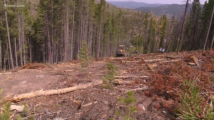 Popular trails closed by Cameron Peak Fire reopen as people head outdoors for summer recreation
