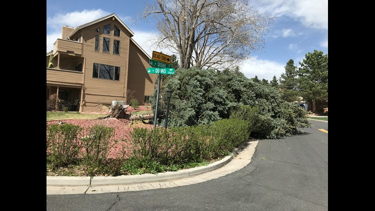 Winds topped 50 miles per hour in Denver Tuesday.