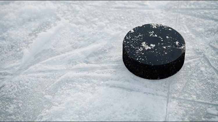 Ice HOCKEY puck generic