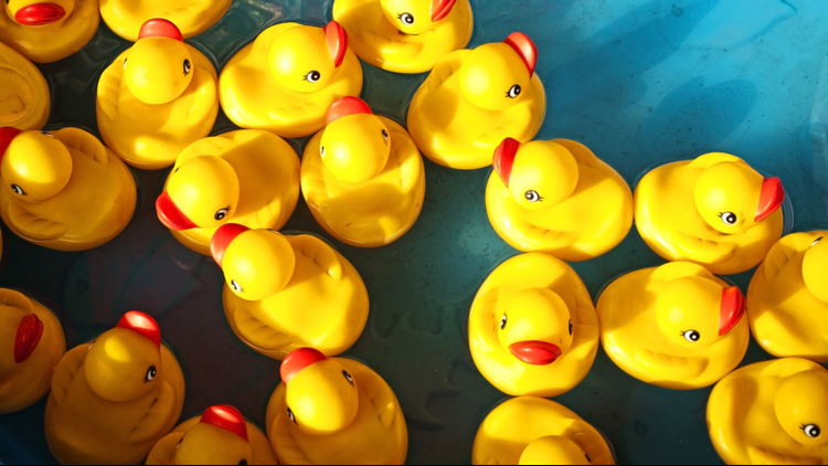rubber ducks cropped