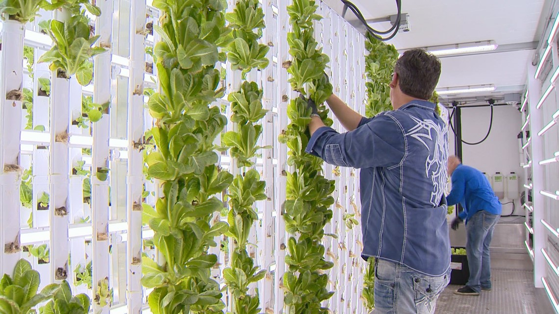 Entrepreneurs design a new kind of sustainable farming (with an urban twist)