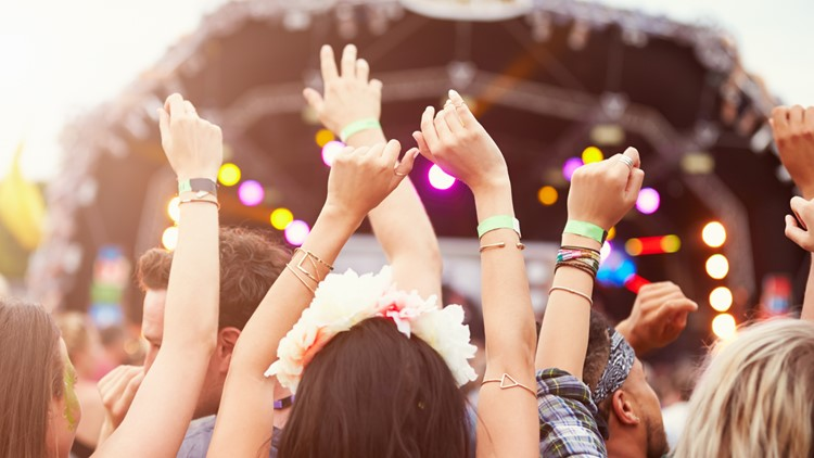 Audience with hands in the air at a music festival summer music fest
