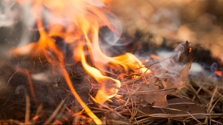 Many counties across Colorado have enacted fire bans to prevent wildfires, particularly in hot and dry conditions.