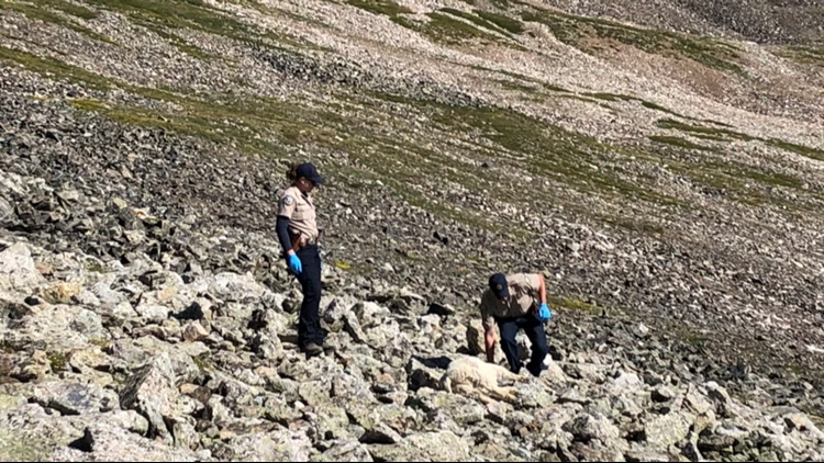 Colorado Parks and Wildlife has announced that the reward for information about the killing of goats on Quandary Peak is now $5,000 thanks to donations.