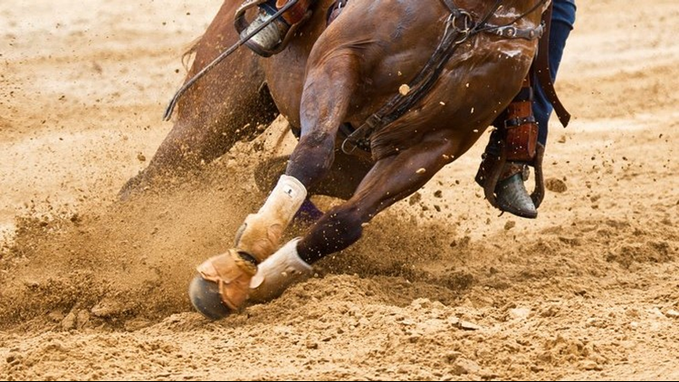 state fair rodeo feet of horse in dirt
