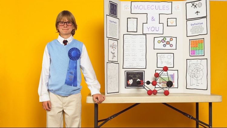 state fair science project