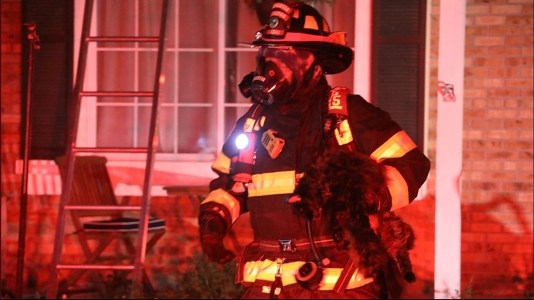 Firefighters rescued two cats from a house fire early Tuesday morning in Highlands Ranch.