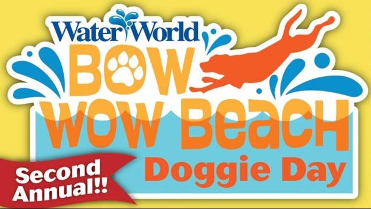 Beach Doggie Day